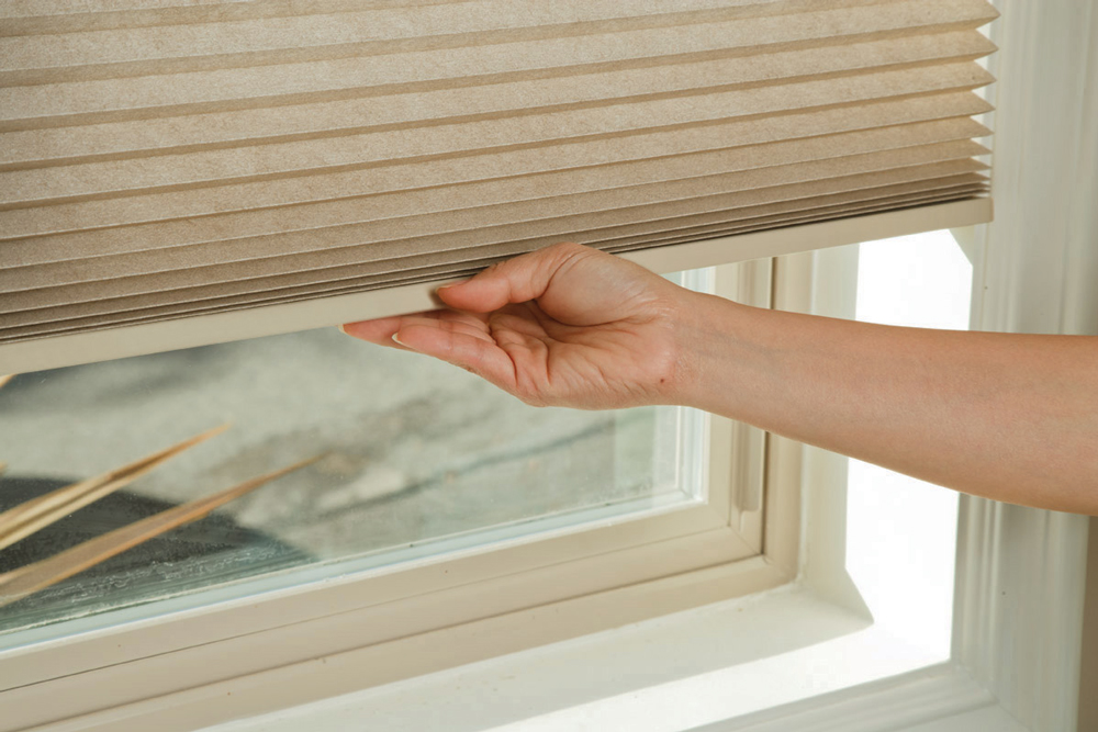Thermacell honeycomb SmartRise blind